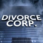 Divorce corp joe sorge
